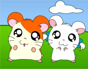 Dessins animés : Hamtaro