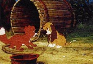 Dessins animés : Rox et Rouky (Walt Disney)