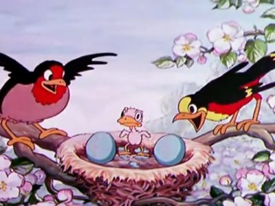 Dessins Animés : Birds in the Spring (Silly Symphonies)