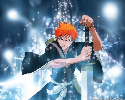 Dessins Animés : Bleach