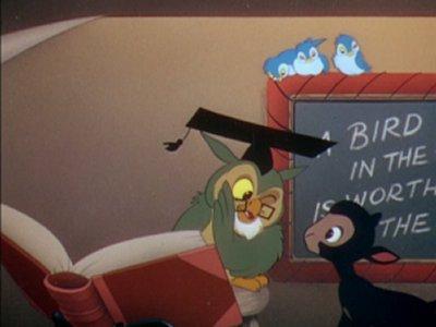 Dessins animés : Danny le petit mouton noir (Walt Disney)