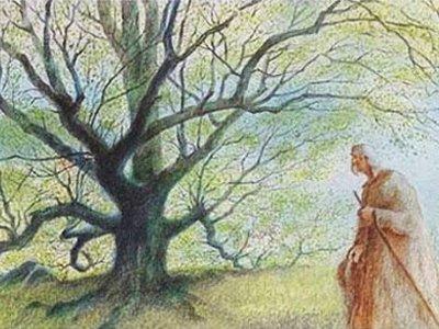 Dessins Animés : L'Homme qui plantait des arbres