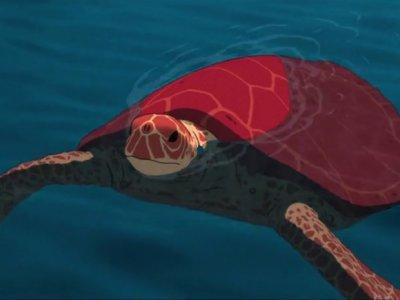Dessins animés : La Tortue rouge