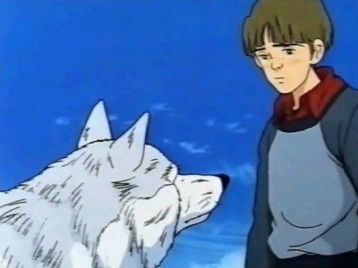 Dessins animés : Le Loup Blanc (Hashire ! Shiro Ookami)